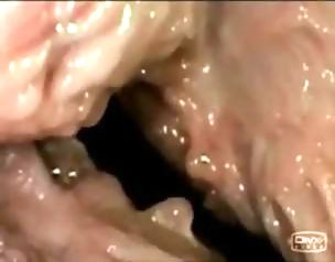 variant Completely bigass babe fucked after giving blowjob remarkable, very